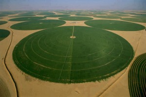 agricultura_arabia_saudita