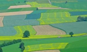 terenuri-agricole_straini