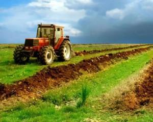 terenuri-agricole_ADS