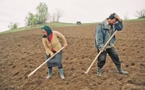 agricultori_subventii