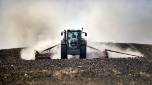 ROMANIA-ECONOMICS-AGRICULTURE-DROUGHT-FEATURE