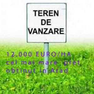 TEREN-VANZARE-1