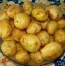 cartofi-noi