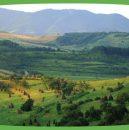 agro mediu