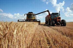 Rcolte du bl :  moissoneuse et tracteur