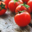 tomata_minimis
