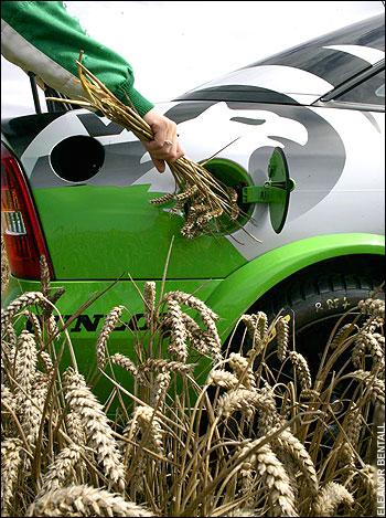 Top-ul celor mai mari producători de biocombustibili din Europa