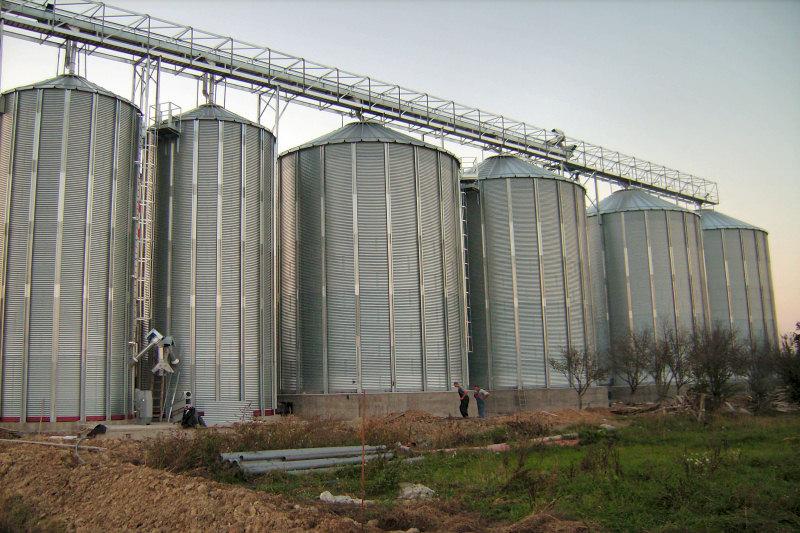Fermierii acuză: Traderii de cereale, singurii cu profituri grase și când e producție mare și când e secetă
