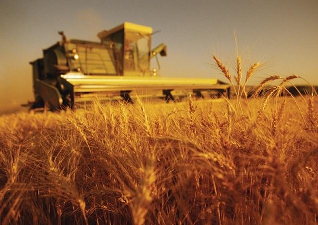 "Romania, tinta ""investitorilor"" straini in agricultura"