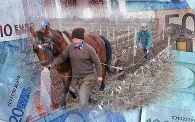 """Fermierii: standardizarea proiectelor cu fonduri UE, o utopie; """"mafia română"""" ar avea de pierdut"""