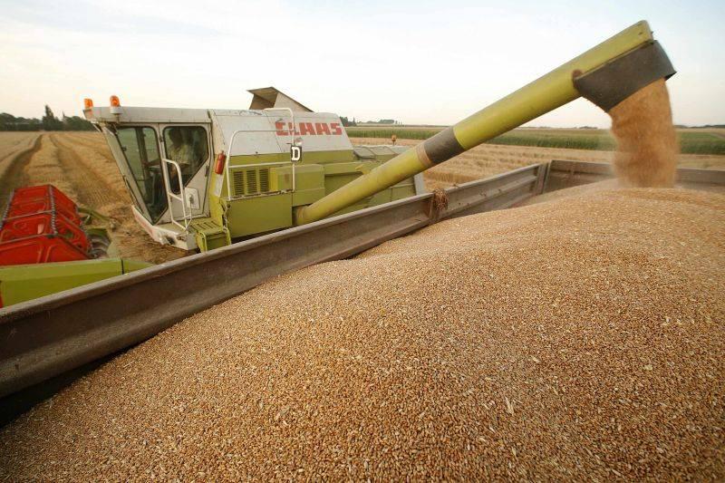 Piaţa, blocată pentru grâu şi porumb
