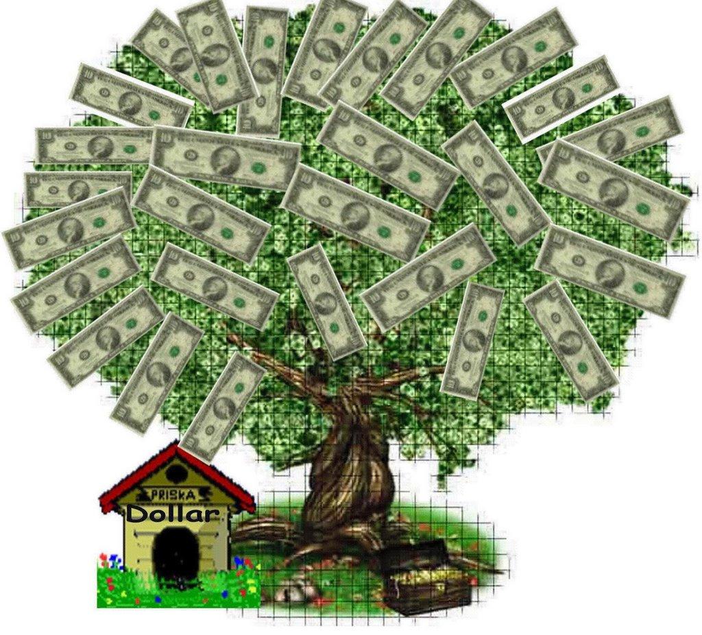 Frânc: străinii transferă înafara ţării 10% din subvenţiile pe suprafaţă