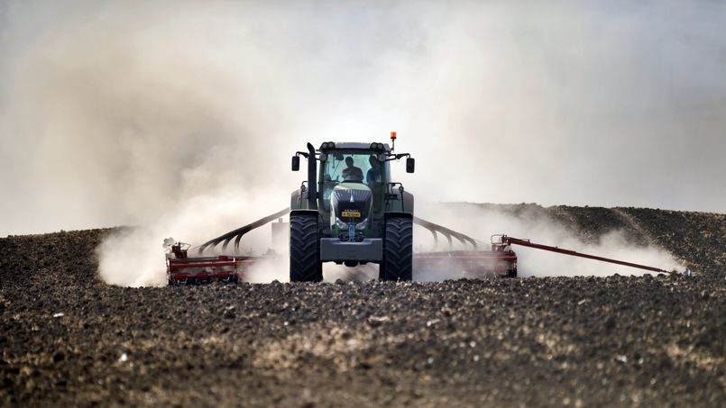 Franc, ROPAC: dezastru pe piata funciara! Strainii detin, de fapt, cateva milioane de hectare de teren in Romania. Multe fara acte…Concurenta neloiala, incurajata de stat, isi arata roadele