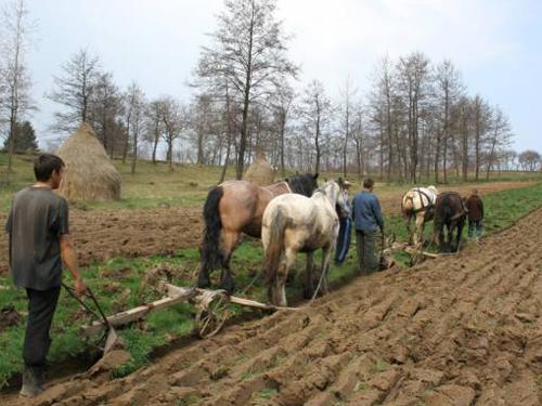 ROPAC/CATAR: Guvernul si Parlamentul nu apara interesele tarii; legea vanzarii terenurilor nu protejeaza resursa strategica care este pamantul; restrictiile la credite pentru romani care primesc si cea mai mica subventie din Europa creeaza o concurenta neloiala intre romani si straini la achizitia de terenuri agricole