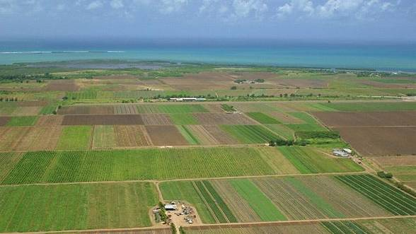 Baciu, LAPAR: situatia terenurilor agricole, o problema nationala, nu una comunitara!
