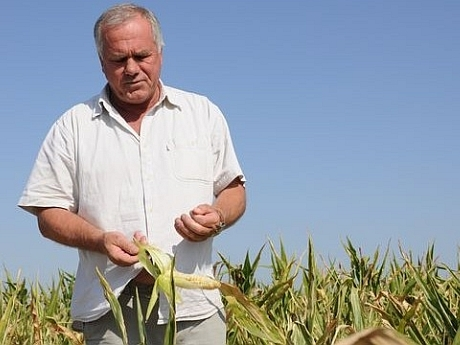 Cu sprijinul Ministerului Agriculturii, traderii dau o noua lovitura fermierilor