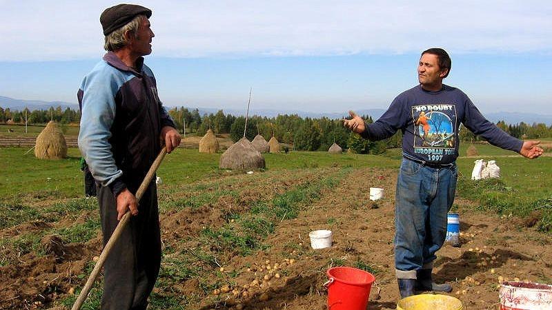 Alinierea preturilor terenurilor la cele din UE ii scoate pe tusa pe fermierii romani