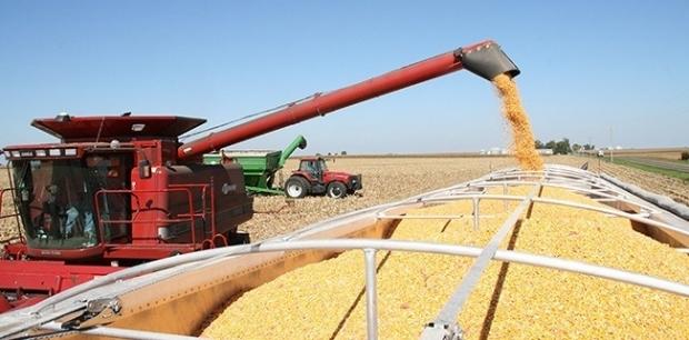 Criza politică din Ucraina perturbă piața cerealelor