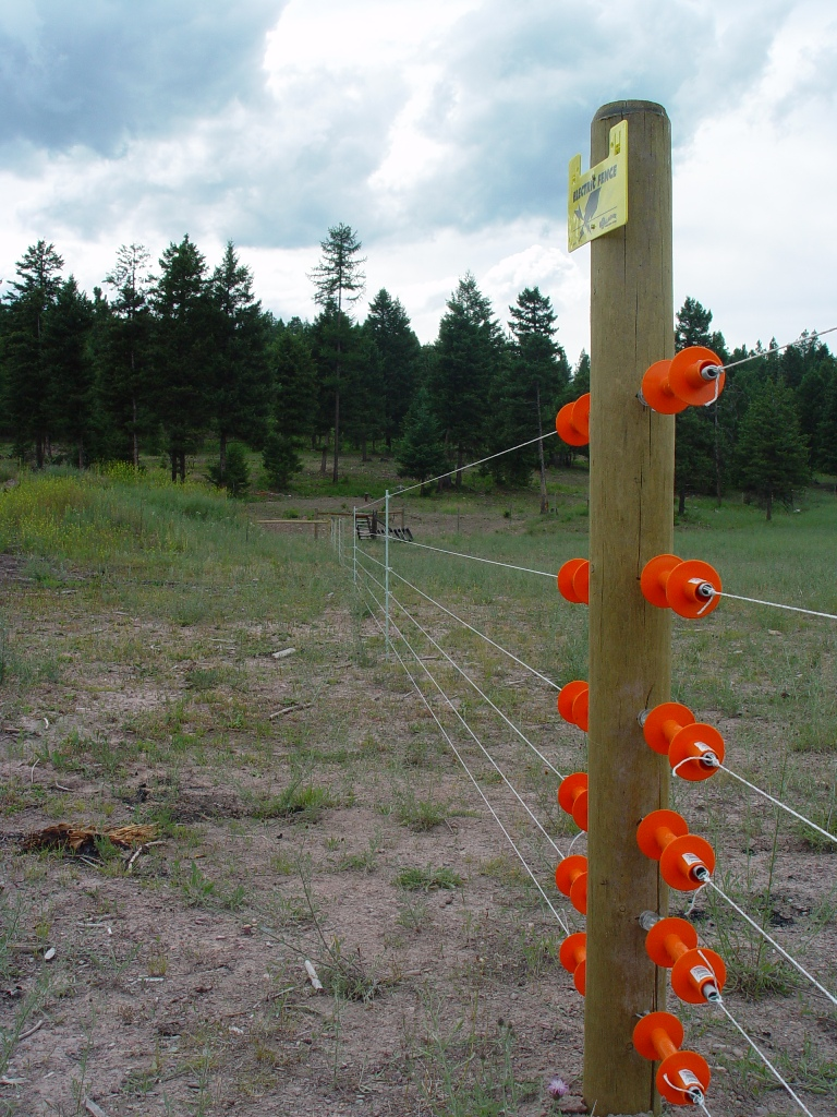 Gardurile electrice păzesc animalele domestice și țin prădătorii la distanță