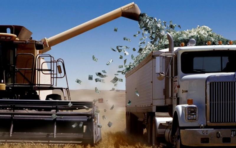 Conferintele AGROstandard: Profitul, tot la marii traderi de cereale, prin manipularea preturilor. Dar nu dintr-o dată ca anul trecut. Acum treptat…