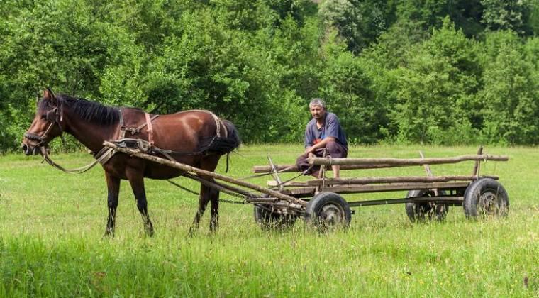 România, bolnavul Europei în materie de ferme de familie
