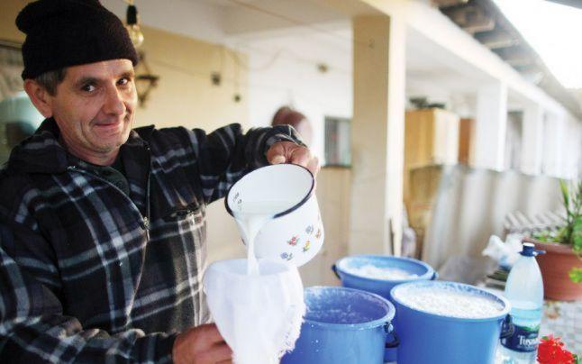 Laptele românesc devine o licoare foarte rară