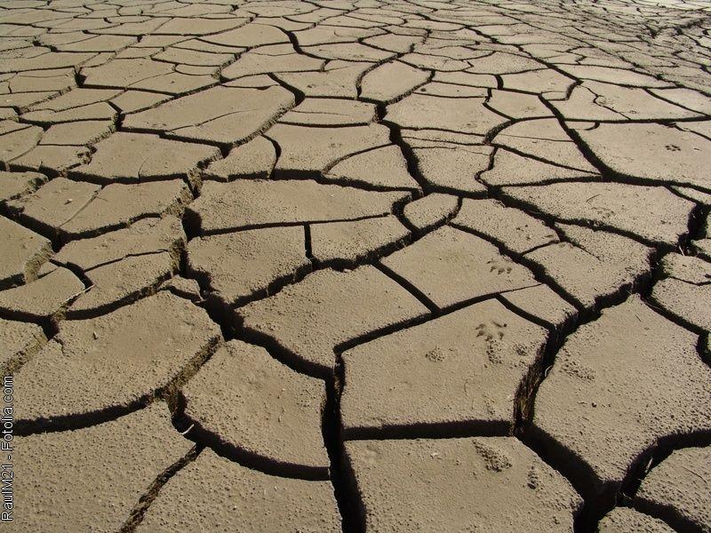Efectele temperaturilor extreme asupra culturilor agricole