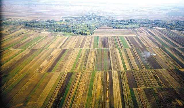 Subvenția se întoarce la strănii care au cumpărat teren în România. Suveica UE sau circuitul banilor europeni în natură
