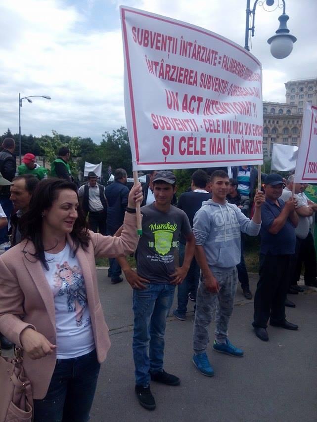 O crescatoare de porci din judetul Buzau vrea sa intre in Parlament
