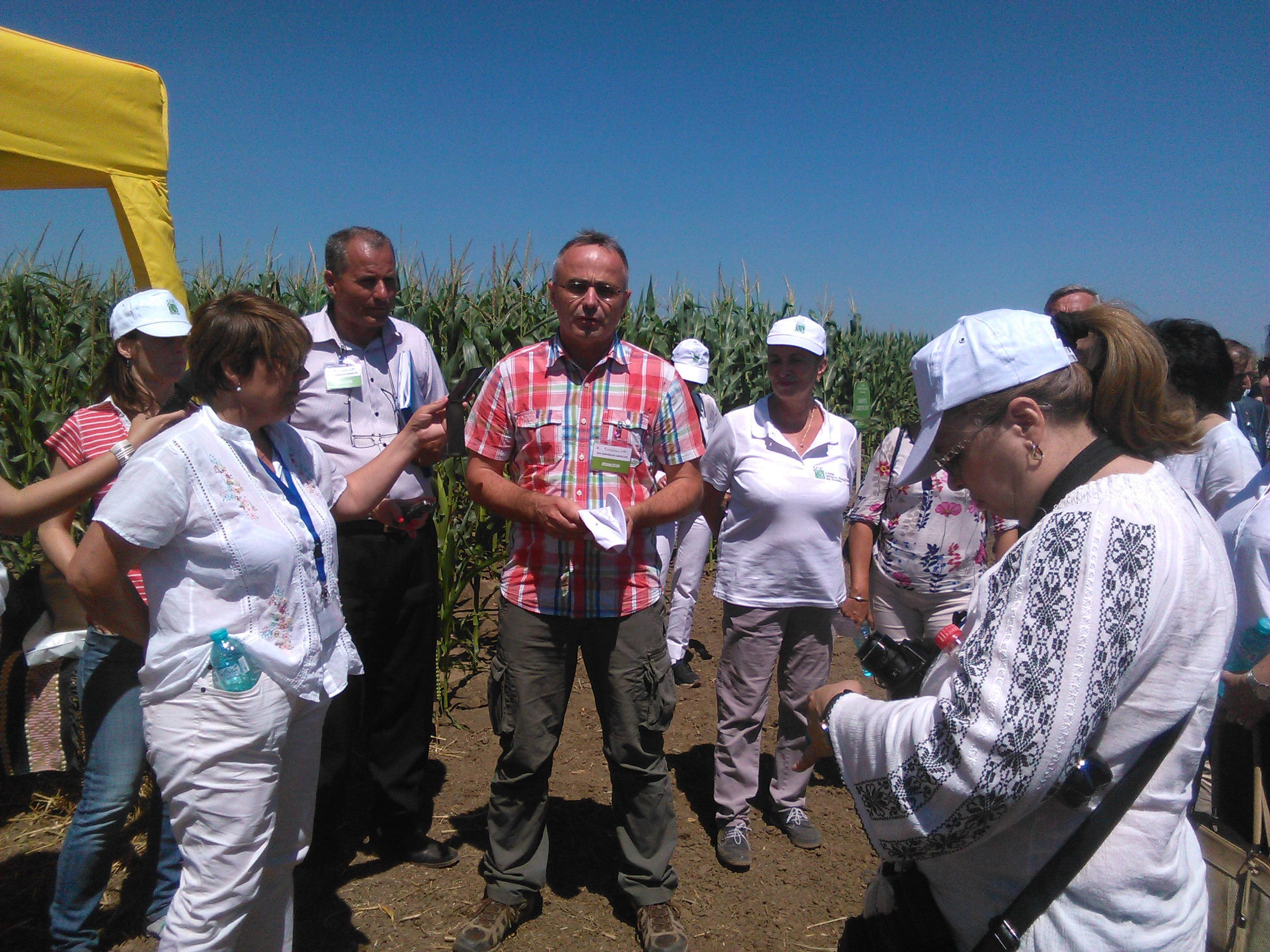 Hibrizi de top la Ziua Semințelor Certificate de la Negrești, Vaslui