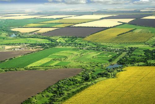O firma romaneasca a cumparat 3.000 ha de teren intr-un singur an