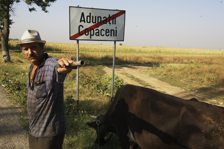 O ferma cu 3.000 ha din Adunatii Copaceni a inregistrat un EBIDTA de 35% in ultimii trei ani