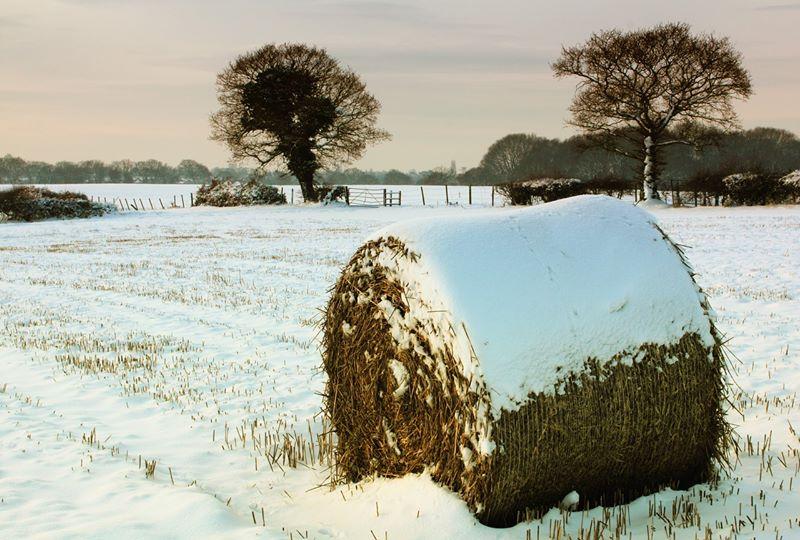 AFIR: Ghidurile pentru investitiile non-agricole din mediul rural au fost publicate