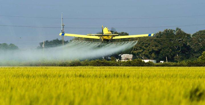 Agricultura in 2016: 1.423 procese comerciale, din care 1.034 de executare silita