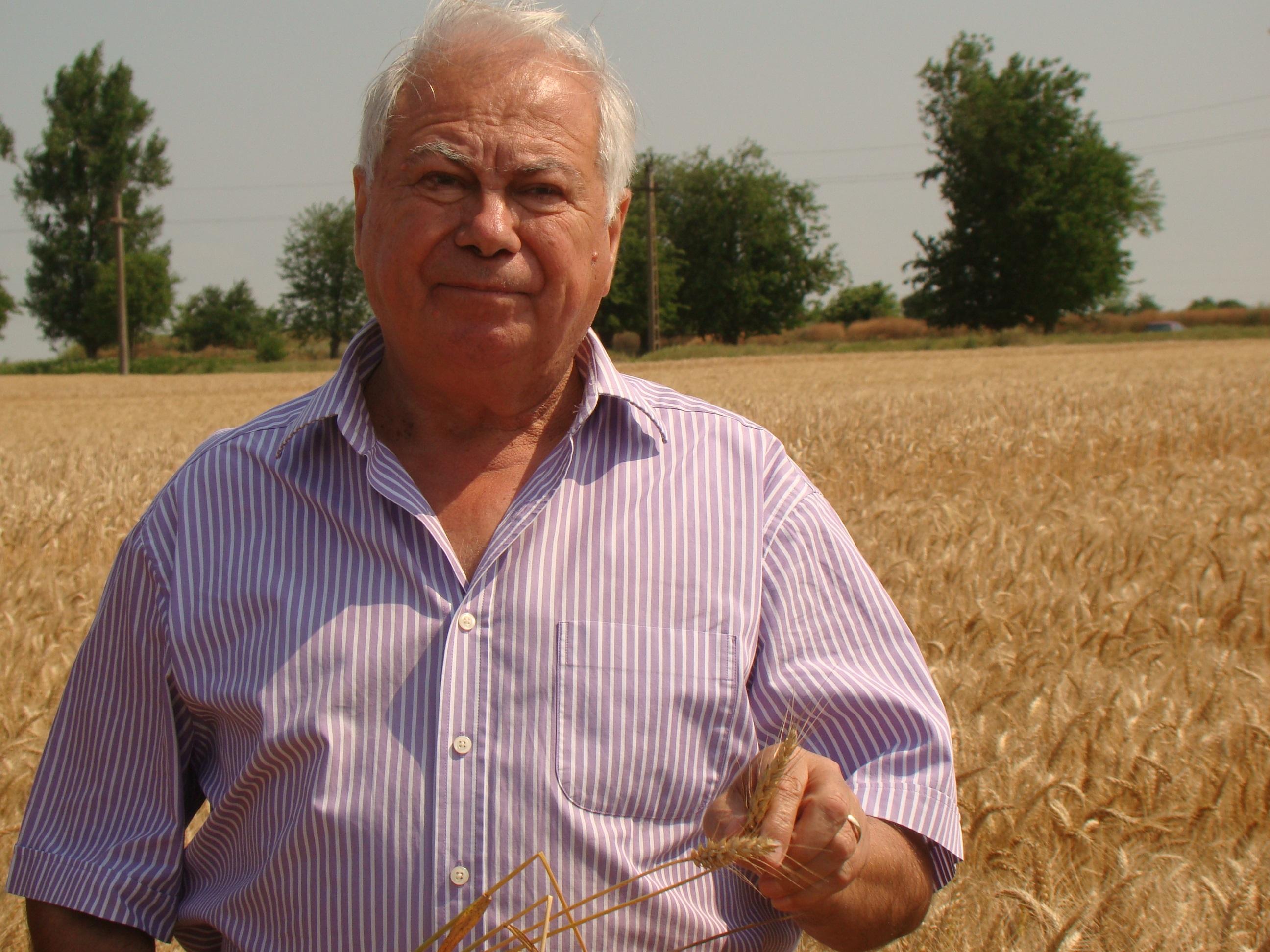 G. Nitu, Agrozootehnica Mihailesti, isi face planuri de 12 tone/ha la grau, cu un soi frantuzesc