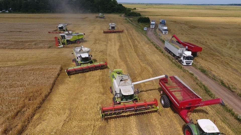 Productii record la Agromad Crops, in acest an: 6 tone/ha la rapita si 7 tone/ha la orz