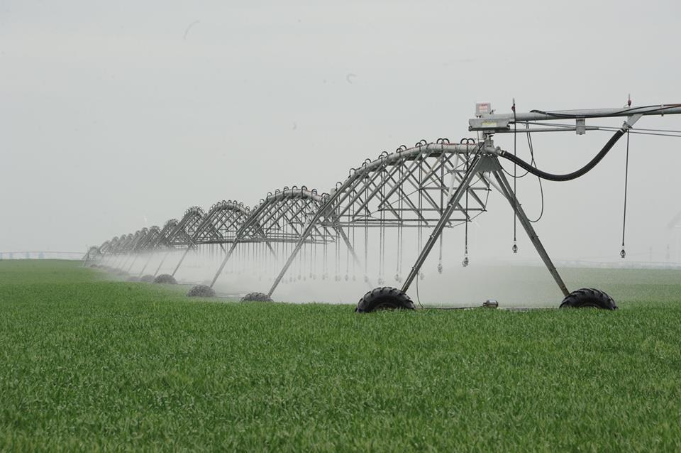 ANIF: In acest an a fost irigata o suprafata de 94.943 ha
