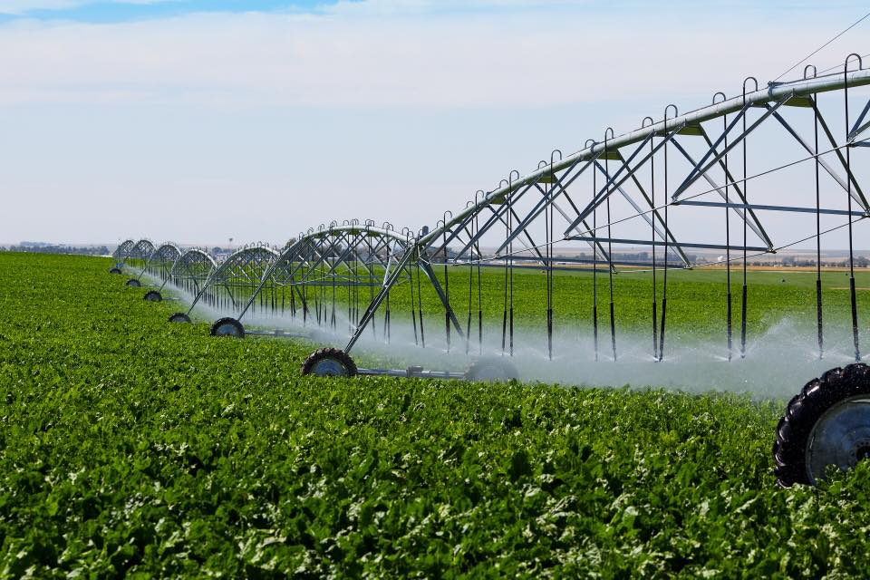ANIF este pregatita sa asigure apa pentru irigarea a 800.000 ha de teren agricol