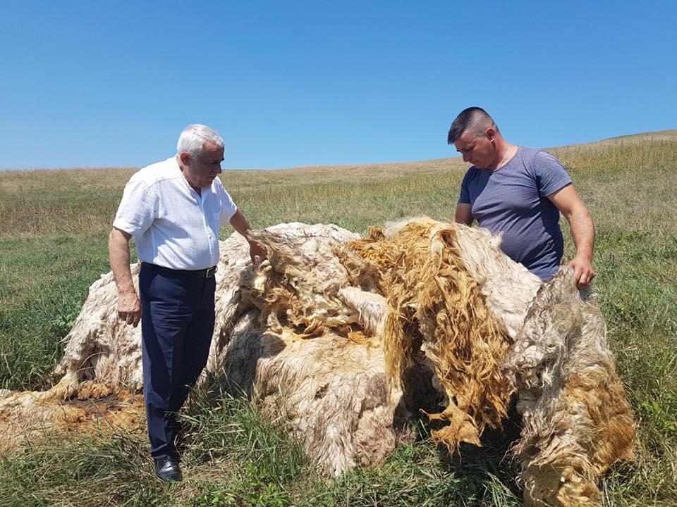 Drumurile lui Daea. Astazi, la Cluj, in cautarea lanii pierdute…
