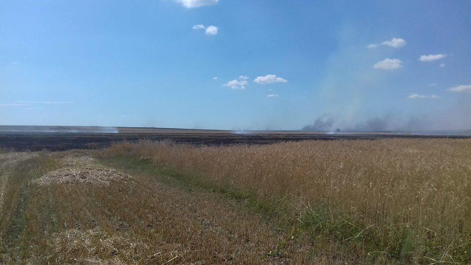 Arderea miristilor si a resturilor vegetale pe terenul arabil, interzisa