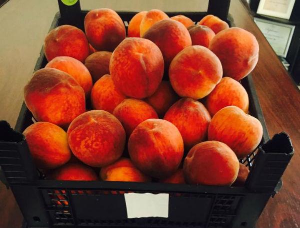 Ajutoare suplimentare pentru producatorii de piersici si nectarine din 3 tari