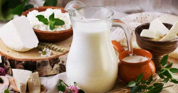 Top 20 cei mai mari producatori de lactate din lume