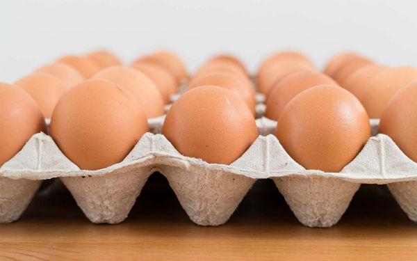 UCPR: In Romania nu se foloseste Fipronil in fermele avicole