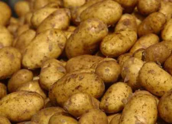 Brasovul nu mai e patria cartofului