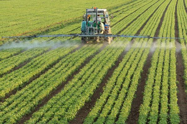 Olanda, tara cu cel mai scump teren agricol din Europa. Un hectar costa 55.000 euro