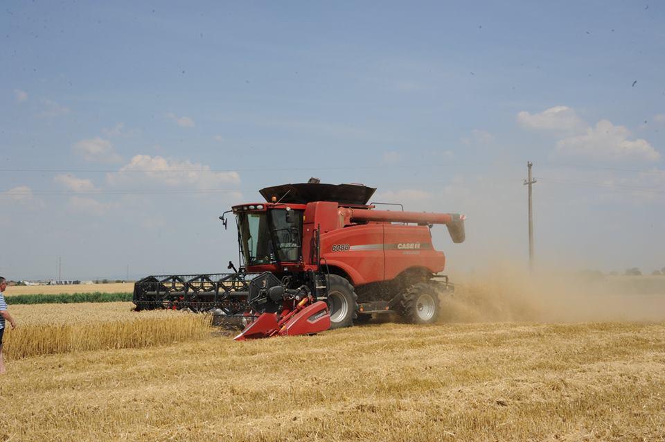 Media suprafetei exploatate de fermieri s-a dublat in zece ani, sustine un oficial APIA