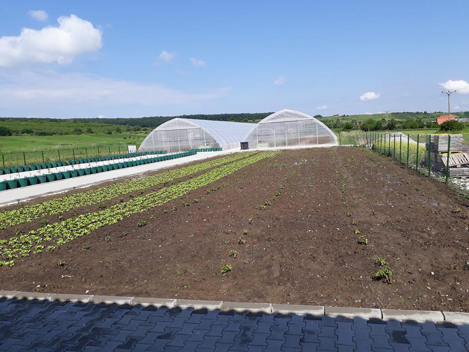 Bani pentru fermele mici de la Fondul European de Investitii (FEI)