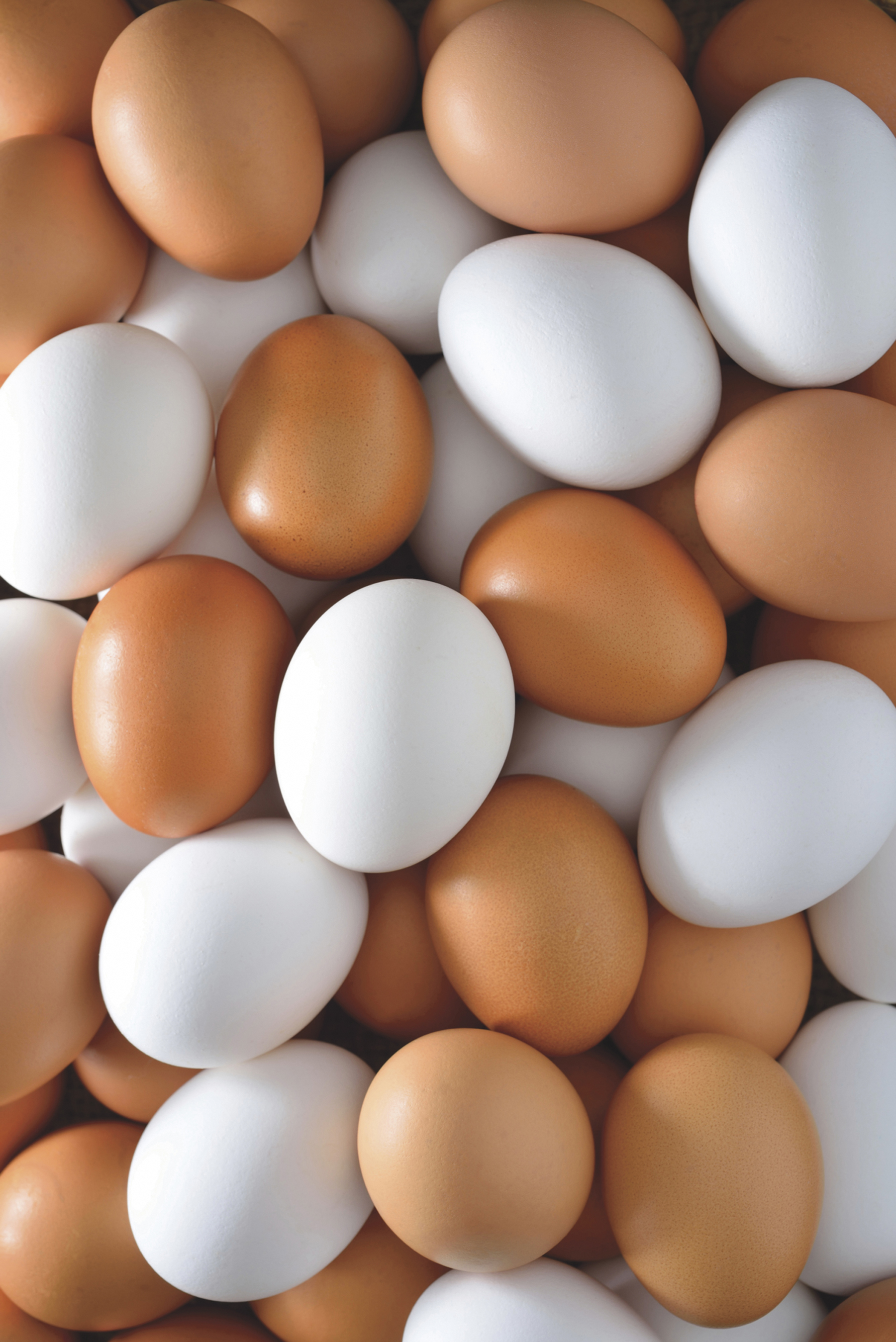 Opt din zece romani consuma oua saptamanal.  De la hipermarket, in principal