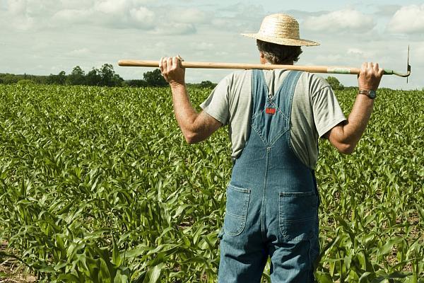 Fermierii mari se plang ca prea multi bani ajung la agricultorii mici