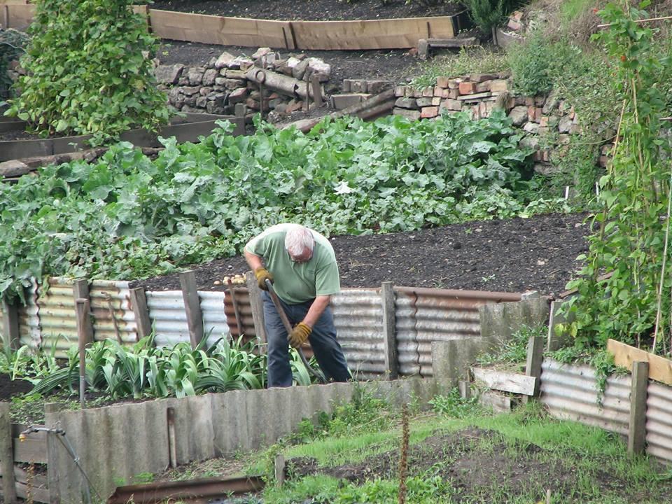 """12 milioane de euro pentru """"micii fermieri"""""""
